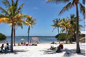 florida_what_to_sea_10 Τα 10 δημοφιλέστερα αξιοθέατα για παιδιά στη Φλόριντα, ΗΠΑ