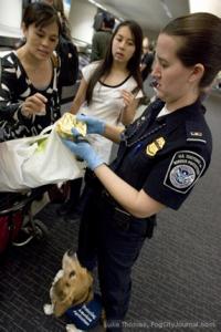 14-200x300 Απαγορευμένα αντικείμενα κατά την είσοδο στις ΗΠΑ